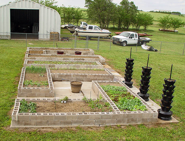 my survival garden pic welcome to the homesteading